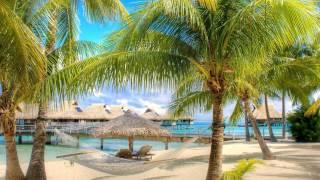 """""""Island Fever"""" by Jimmy Buffett"""
