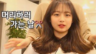 미용실 가는날 브이로그✂ [강남역/역삼동/레이어드컷/레…