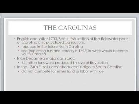 British Colonies:  The Southern Colonies