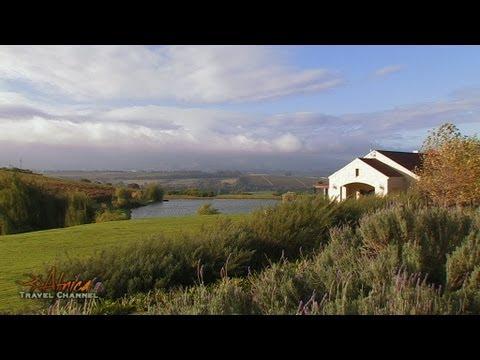 Asara Wine Estate & Hotel Accommodation Stellenbosch South Africa - Africa Travel Channel