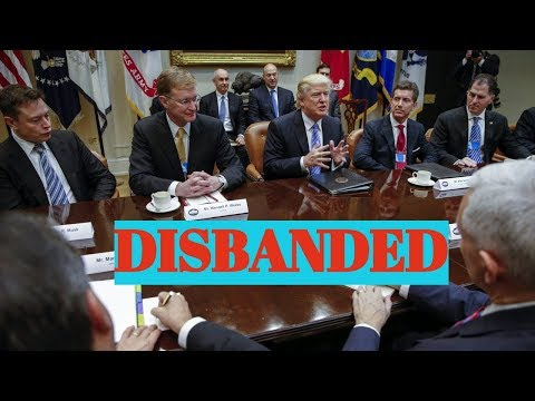 BREAKING NEWS: Trump Disbands CEO Business Councils
