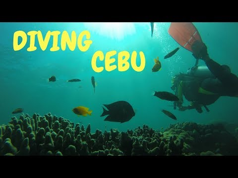 Diving off the boat in Cebu with Sidive | PHILIPPINES travel