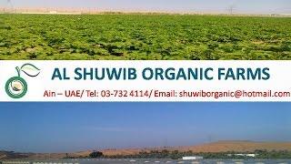 ORGANIC FARM - AL SHUWIB ORGANIC FARMS