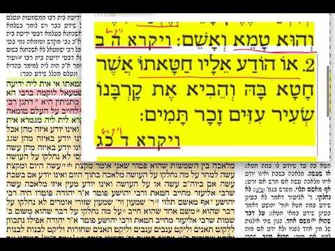 דף יומי מסכת כריתות דף יט Daf yomi Kerisos daf 19