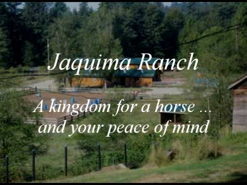 horse boarding stable in maple ridge bc canada has space
