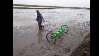 rice farming in mwea
