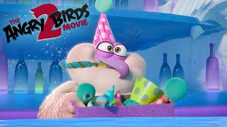 Angry Birds Movie 2 | Meet the New Birds and Pigs Intro