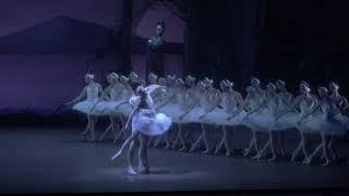 ジョン・クランコ振付の「白鳥の湖」上演! 『シュツットガルト・バレエ...