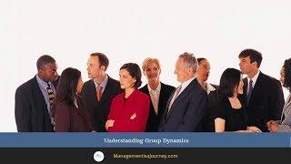 Understanding Group Dynamics