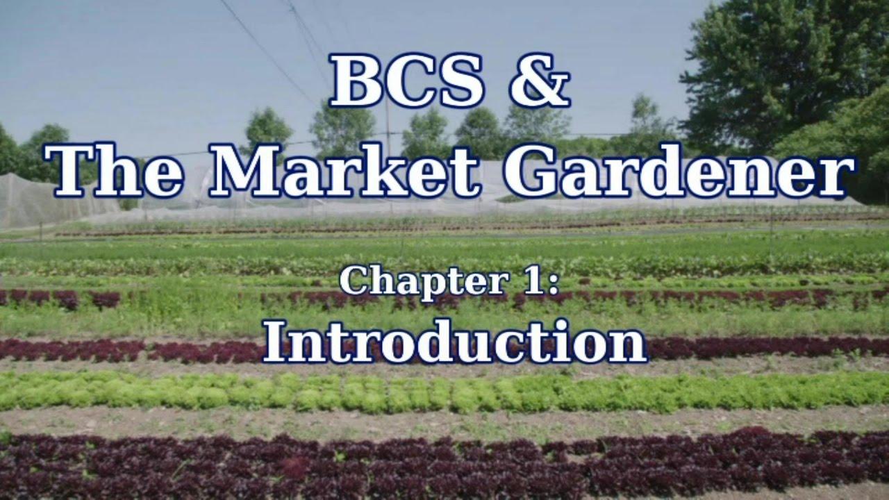 BCS and the Market Gardener   BCS America