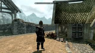 TES 5: Skyrim - Виды брони