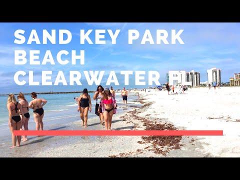 Walk On Sand Key Park Beach Clearwater Florida 🏖️