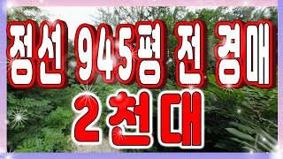 [부동산추천] 강원도 정선 945평 '전'…