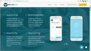Payments With Fiat And Crypto   Beluga Pay Review   Hot Ico 2018   What Is Beluga Pay.