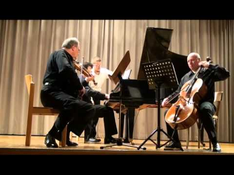 Mendelssohn Trio in D minor, 1st Movement