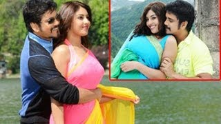 Video Bhai Movie | Latest Photos | ‪Nagarjuna‬ | Richa Gangopadhyay | Nathalia Kaur download MP3, 3GP, MP4, WEBM, AVI, FLV Juni 2018