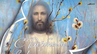 Вербное воскресенье Самое классное поздравление с Вербным воскресеньем