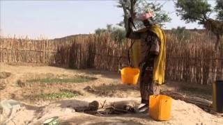 Gemüseanbau in der Trockenzeit - Frauen machen es im Niger dank SWISSAID möglich