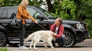 """""""M jak miłość"""" – """"To mój pies!"""" – scena z odc. 1409"""