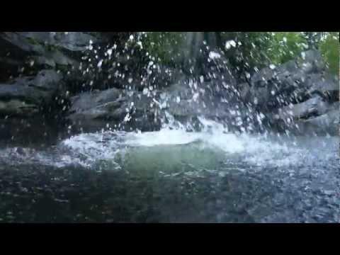 Dive into the Boquet River