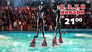Новый год и Рождество в Одесском дельфинарии НЕМО