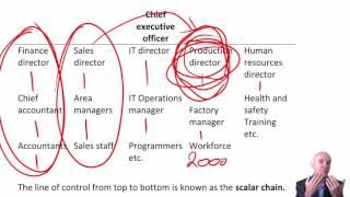 CIMA E1 Organisational Structure