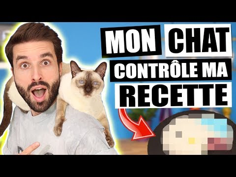 MON CHAT CONTRÔLE MA RECETTE - CARL IS COOKING