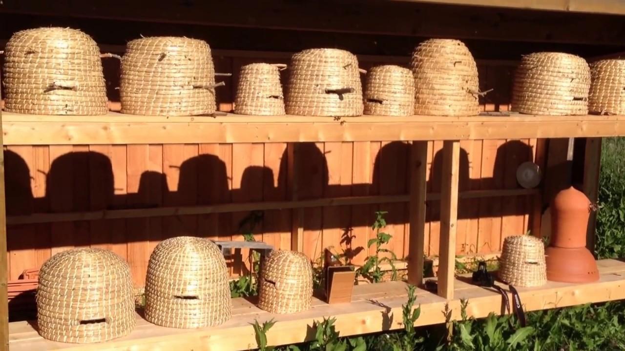 ouverture de ruches en paille tress e un toit pour les. Black Bedroom Furniture Sets. Home Design Ideas