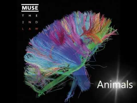 Muse - Animals (Lyrics)
