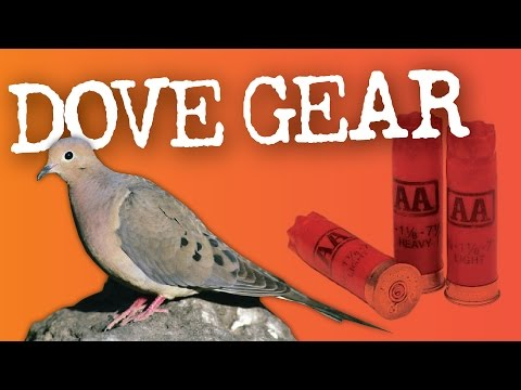 Dove Hunting Gear