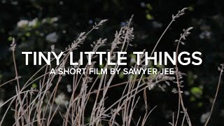Tiny Little Things - Short film