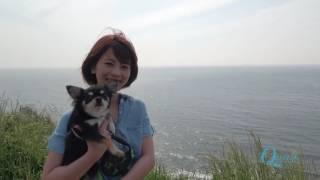 吉﨑綾「AYA'SSANPO」long ver 吉崎綾 検索動画 12