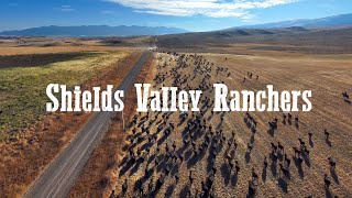 Shields Valley Ranchers | Prime tasting home-raised beef from Montana