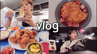[일상vlog] 첫 동대문 밤시장+믿고먹는 맛집 반포 …