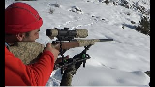 Wıld Boar Huntıng. Domuz Avı.Muhteşem Atışlar