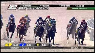 Vidéo de la course PMU PREMIO TENTADORA