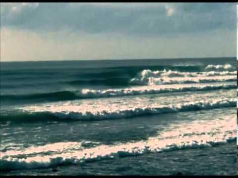 Sea Movies  All I've Found George Greenough