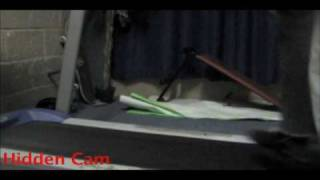 Prank war 2009 trailer