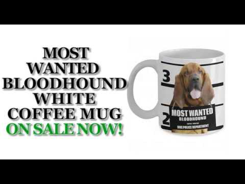 Most Wanted Bloodhound – 11oz White Ceramic Coffee Mug