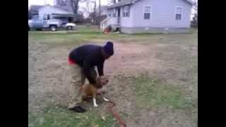 "Corey Welch Aka Mr. Mutt ""da Dog Trainer""..."