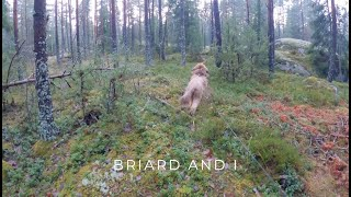Briard and I  Forest dog running