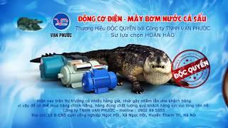 Phim quảng cáo TVC | Máy bơm nước Cá sấu Vạn Phước