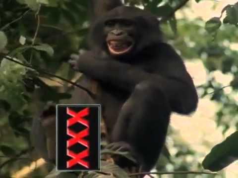 Dirty sex liking xxx