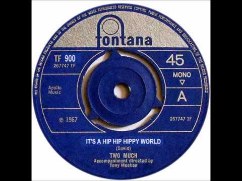 It's A Hip Hip Hippy World - TOO MUCH