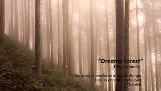 Dreamy Forest - Dlapan Studio