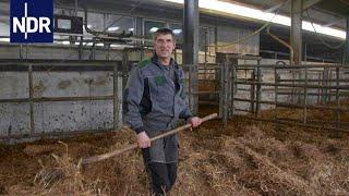 Landwirtschaft am Limit: Ackern bis zum Umfallen? | Doku | DIE REPORTAGE | NDR