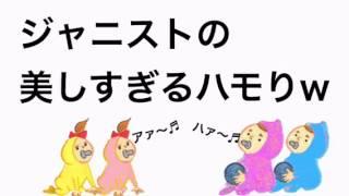 ジャニーズWEST【こんなハモり初めてやわ!】気持ちいいぐらいボケるジャニスト!笑(藤井、中間、?田、小瀧)