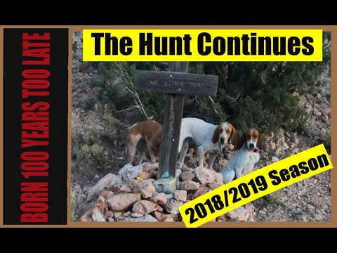 12/4/18 Hunting Mountain Lions In The Desert: Hounds And Mules  #born 100 Years Too Late #firstlite