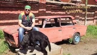 Ультразвуковой свисток в дрессировке собак