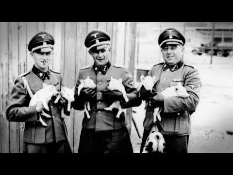 Nazi Creatures (WWII Documentary HD)
